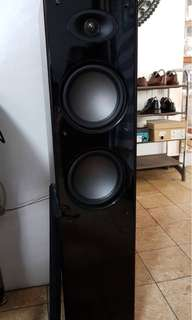 Colvern Floor Standing Speakers