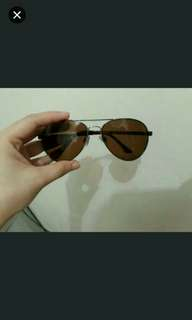 Dickies sunglasses