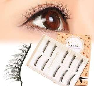 Momo Eyelash Extensions