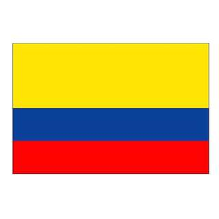 Colombia Flag (14x21cm)