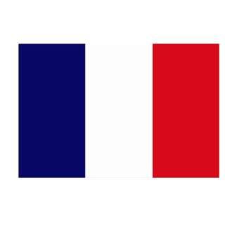 France Flag (14x21cm)