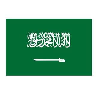 Saudi Arabia Flag (14x21cm)
