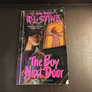 The Boy Next Door - R.L Stine