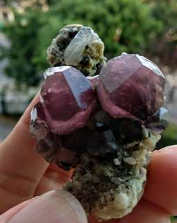 Gemmy Mushroom Soulmate Twin Tourmaline Crystal on Matrix