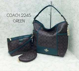 Coach Hobo 3 in 1 Bags Green Color