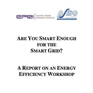 Are You Smart Enough For The Smart Grid? A Report On An Energy Efficiency Workshop (366 Page Mega eBook)