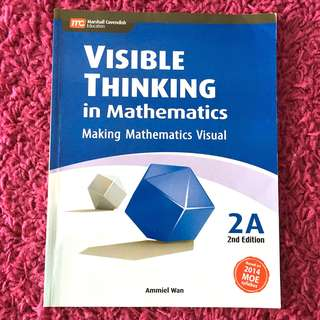P2 Visible Thinking In Mathematics (Making Mathematics Visual)