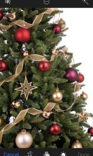 Christmas tree (2.1m)