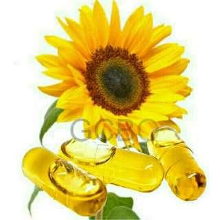 Kapsul minyak bunga matahari