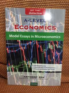 Model essays in microecnomics