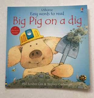 Big pig on a dig book