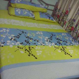 4 pcs queen bedsheet cadar