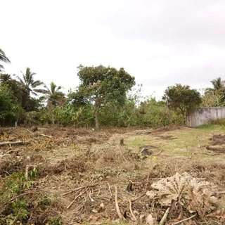150sqm Residential Lot For Sale In Loma Amadeo Cavite
