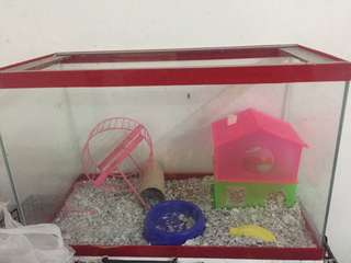 REPRICED!!!Glass Hamster Cage OR Aquarium 5 gallons