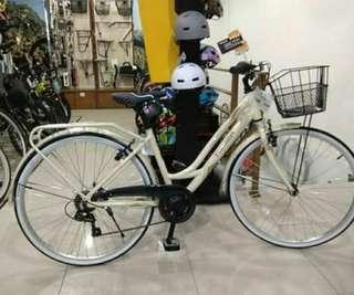 Sepeda keranjang polygon