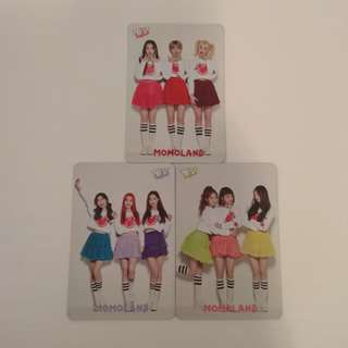 MOMO LAND YES CARD