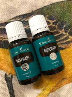 Young Living 精油 Rosemary