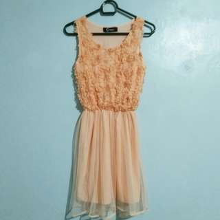 Peach Dress (Cinderella brand)