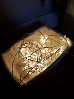 Snowflake Fairy Lights