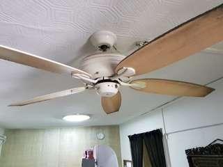 Repair Ceiling Fan Services