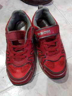 Geox shoes sports