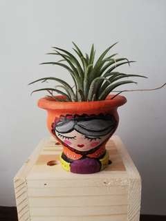 Prosperity Doll Pot with Air Plant