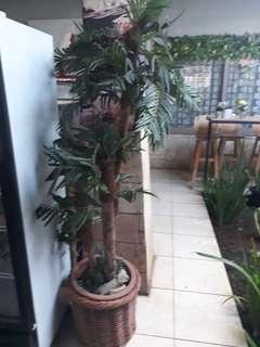 Pohon sintetis