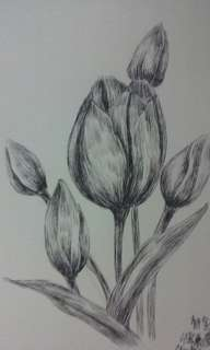 Flowers drawing by pen