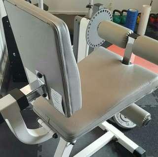 Compact Leg Quads/ Bicep Extension Machine