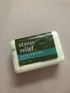 Bath and Bodyworks Eucalyptus Spearmint Body Soap