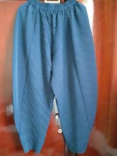 Pleated Pants Navy Blue