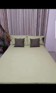 Bedsheet with 2 pillowcase