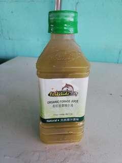 Organic Forage Juice 馬草汁/牧草汁