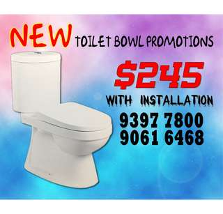 Toilet Bowl Replacement