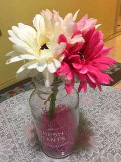 Flower ( Daisy )