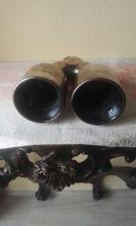 Exhaust Twin Tip stainless stell