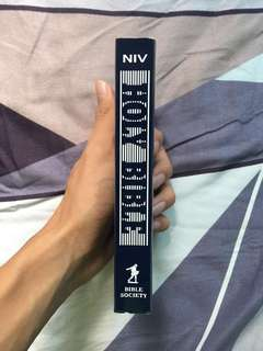 holy bible international