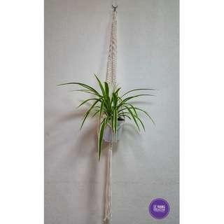 🖐 Handmade Macrame Plant Hanger 🖐 H013