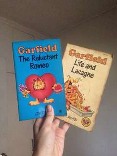 Garfield (Take-All-2)