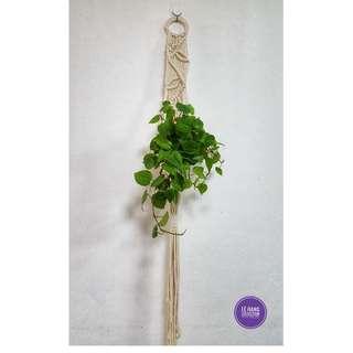 🖐 Handmade Macrame Plant Hanger 🖐 H014