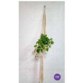 🖐 Handmade Macrame Plant Hanger 🖐 H016