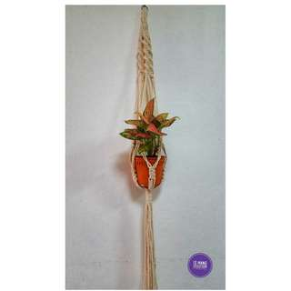🖐 Handmade Macrame Plant Hanger 🖐 H017
