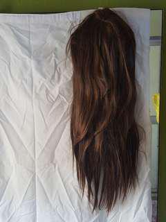 Long Hair, Dark Brown Wig