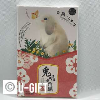 Cute Bunny Postcards/ Greeting Cards