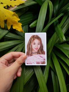 Twice (What Is Love?) Pre-order benefit Chaeyoung photocard