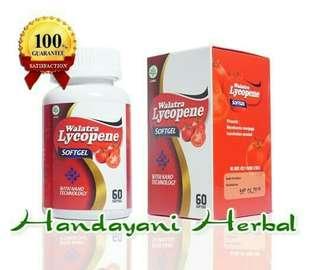 Obat Herbal Untuk Gangguan Prostat dan Urin