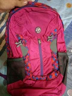 REPRICED Hawk Travel Bag (Pink)