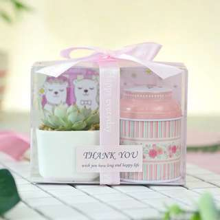 Mini Plant Candy Tin Gift Set Pink