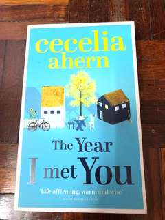 Book for sale:Cecelia Ahern- The Year I Met You