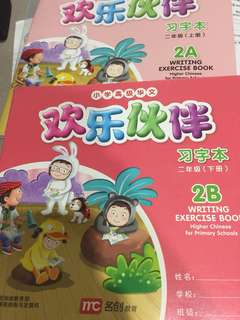 Chinese 2A and 2B writing exercise book